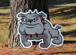 Middle School Bulldog