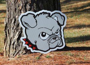 Zahnow Bulldog