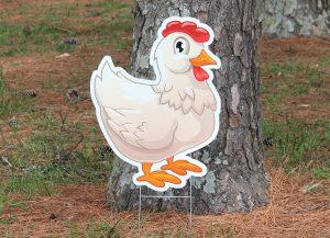 Farm-Chicken